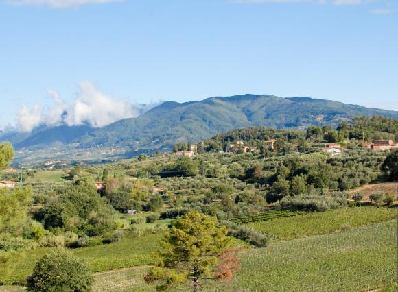 toskański krajobraz